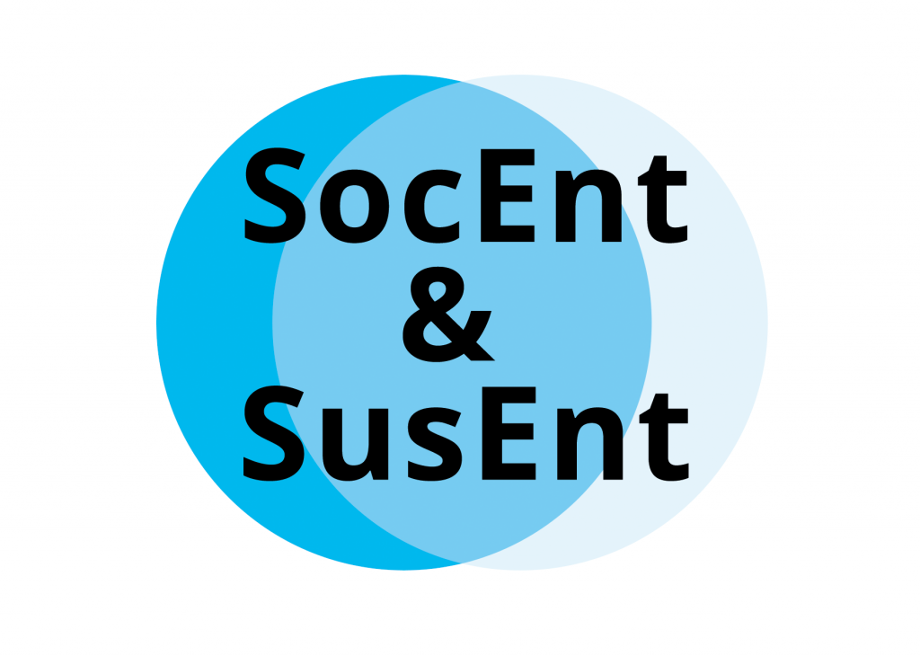 Verhältnis Social Entrepreneurship und Sustainable Entrepreneurship