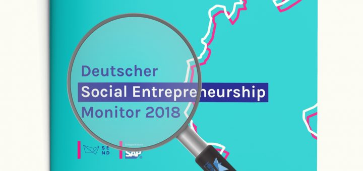 Deutscher Social Entrepreneurship Monitor Einschätzung