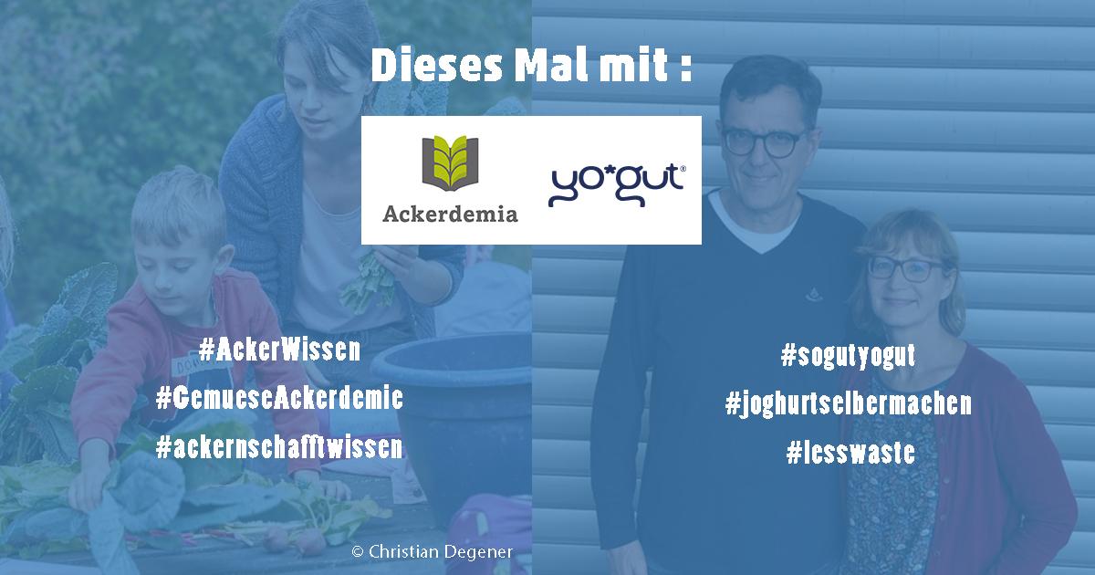 Hilfswerft_Social_Entrepeneurship_Abend_Food